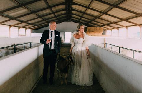 diamant estate wedding photos